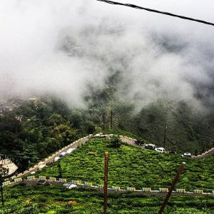 Darjeeling weather during monsoon